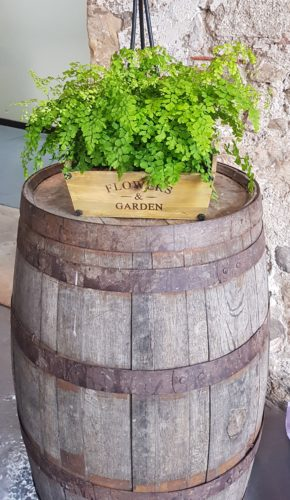 Plant and Barrel to hire scotland