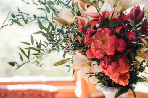 Bright Coral Flowers